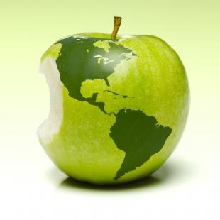 Travel Apple